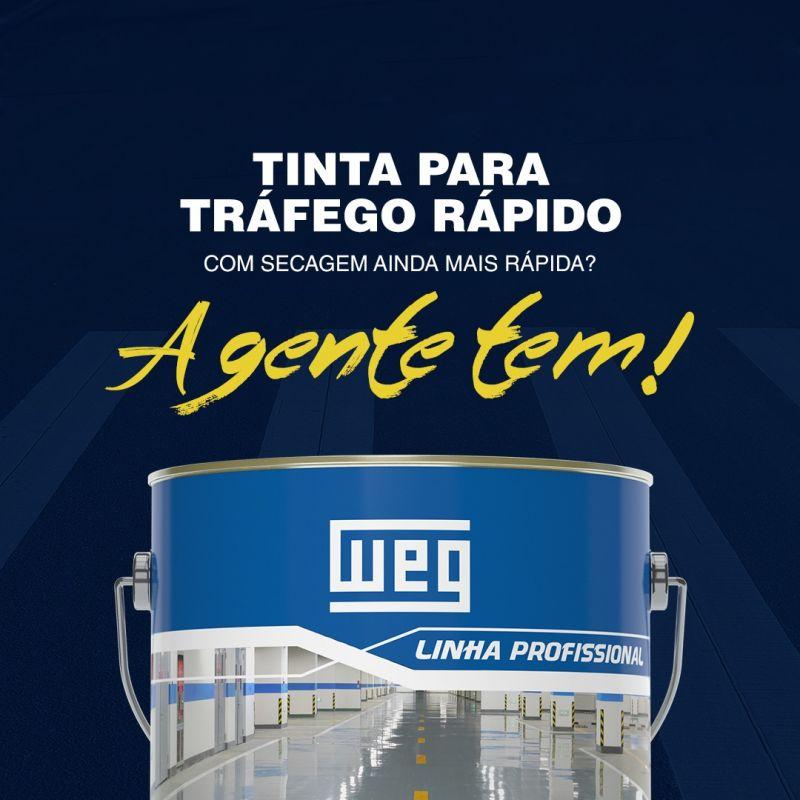 TINTA WEG W-POXI DFA 301 - 381